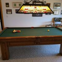Olhausen Pool Table 4' x 8'